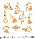 rabbit, vector, cute 39253906