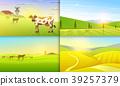 Rural landscape. Farm Agriculture. Vector 39257379