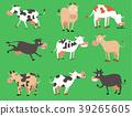 vector, cow, animal 39265605