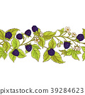 blackberry vector pattern 39284623
