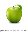 Vector Realistic Green Apple. Detailed 3d  39293955