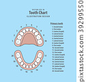 Tooth Chart Primary teeth with number vector 39299550