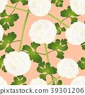 ranunculus flower background 39301206