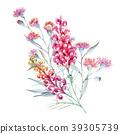 Watercolor australian grevillea composition 39305739