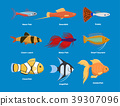 vector fish aquarium 39307096