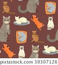 vector, cat, breed 39307126