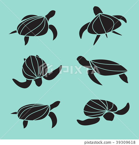 Set of vector turtle isolated on blue background. 39309618