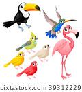 Group of funny tropical birds. Vector cartoon isol 39312229