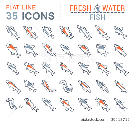 Set Vector Line Icons of Freshwater Fish 39312713