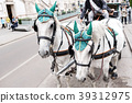 Horse-driven carriage at street in Vienna, Austria 39312975