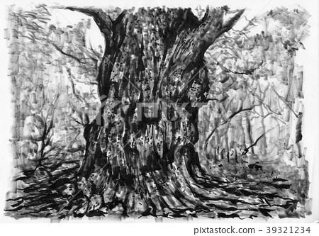 조몬 삼나무 39321234