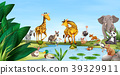 Wild animals by the pond 39329911