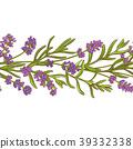lavender plant vector pattern 39332338