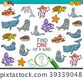 find one of a kind game with marine animals 39339048