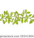 marjoram, branch, vector 39341904