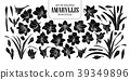 Set of isolated silhouette Amaryllis 39349896