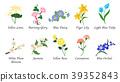 Organic nature botanic garden flower collection 39352843