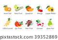 Organic nature health fruit vector collection 39352869
