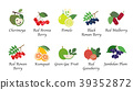 Organic nature health fruit vector collection 39352872
