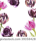 Botanical blank for text. Watercolor Tulips 39356428