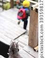 고양이, 무섭다, 두렵다 39359817