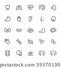 Mini Icon set – Human Anatomy icon vector 39370190
