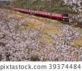 만개 한 벚꽃과 케이 큐 액세스 특급 39374484