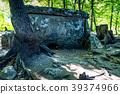 Caucasus dolmen in forest 39374966