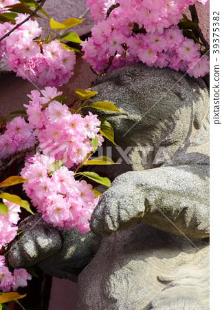 Sculpture of a bear in Sakura flower blossom 39375382