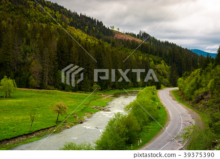 road along the river near the forest on hillside 39375390