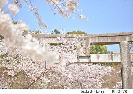 Kamonmon神社 39380702