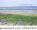 성산포 해변의 마린포트 홀 39382963