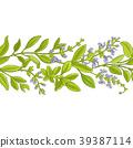 sage branch  vector pattern 39387114