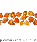 phisalis branch vector pattern 39387134