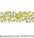 flower, floral, hypericum 39387156