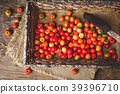 Babados cherry fruits-Malpighia glabra fruits 39396710
