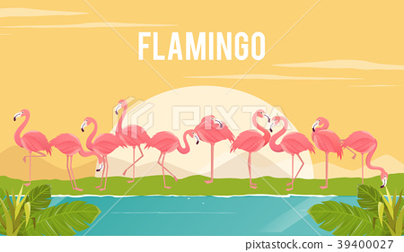Set of flamingos on background. illustration. 39400027