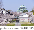 나고야 성 벚꽃 39401685