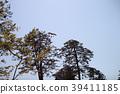 가나자와 성 푸른 하늘에 매 39411185