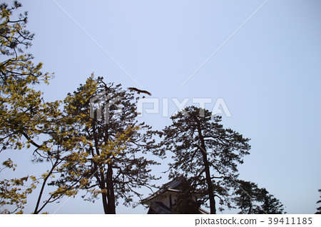 在藍天的今池城堡蒼井空 39411185