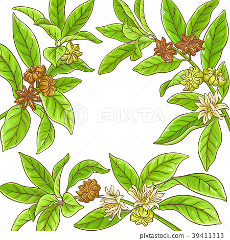 anise branches frame 39411313