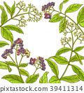 background, peppercorn, leaf 39411314