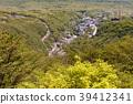 온천 마을, 온천가, 신록 39412341