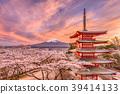 Japan in Spring Season 39414133