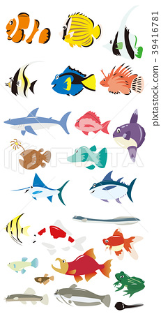 Tropical fish and sea fish and freshwater animals 39416781