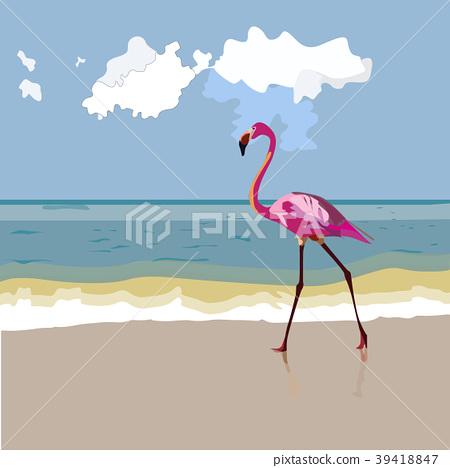 A wild pink flamingo 39418847