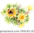 พื้นหลังสีขาว,ดอกไม้,แดนดีเลียน 39428119