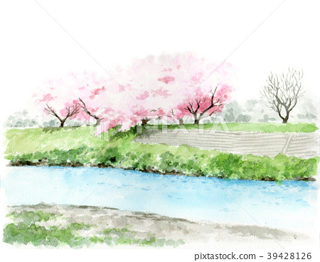 cherry blossom, yoshino cherry, spring 39428126