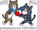 권투를하는 고양이 39429814