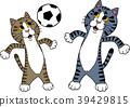 축구를하는 고양이 39429815